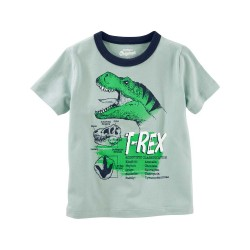 21987720 Playera verde T-Rex